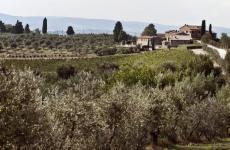 Uno sguardo panoramico del Relais Riserva di FizzanoaCastellina in Chianti (Siena), sede diPasso dopo Passo Osteria