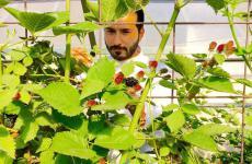 Il campano Antonio Danise è lo chef del ristorante della Villa Necchi alla Portalupa, a Gambolò nel Parco del Ticino