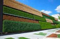 Il campo verticale è certo la maggiore attrazione del padiglione d'Israele a Expo 2015: riso, frumento e mais coltivati grazie all'irrigazione a goccia, con risparmio di spazio, acqua ed energia