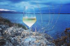 Il Vermentino in Maremma, un vino che profuma di mare e che vuole diventare un riferimento per la zona