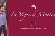 L'associazione La Vigna di Mattia è nata per realizzare il progetto di Mattia Mingarelli, comasco, scomparso trentenne a dicembre: creare il miglior vino spumante Metodo Classico siciliano da uve Nerello Mascalese