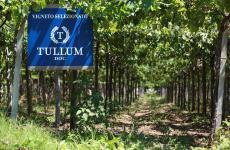 La Docg Tullum: solo 15 ettari per puntare alla massima qualità