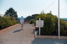 Il buono viene direttamente dalla terra, dall'orto, a Orto il ristorante del Nina Trulli Resort a Monopoli (Bari)