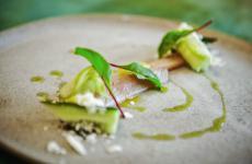 Sgombro e cetrioli: la ricetta estiva di Massimiliano Mandozzi
