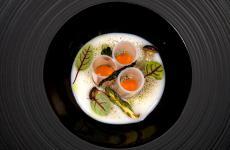 A me non piace il sushi, uno dei due piatticoi quali Antonio Cuomo ha vinto The Vegetarian Chance 2018 (le foto sono di Vittorio Giannella)