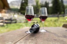 I progetti dei vini dell'Alto Adige passano dalla sostenibilità