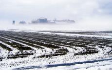 Il campo innevatoaTenuta Castello, azienda agricola fondata nel 1833 a Desana (Vercelli)
