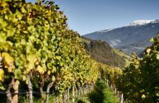 La Valle Isarco è una delle due valli principali dell'Alto Adige. Si estende dalla sorgente del fiume Isarco al Brennero, fino alla foce nell'Adige a Bolzano