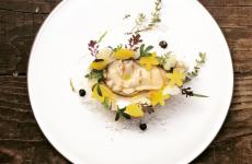 Ostrica con il suo garum, rape in conserva, salmoriglio: il piatto dell'inverno di Marco Ambrosino