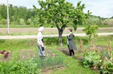 Antonia Klugmann al mattino mentre raccoglie erbe e germoglidavanti al suo L'Argine insieme allo stagista Emanuele Del Do, friulano diSan Daniele