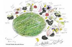 Il piatto diAnnie Féolde e Riccardo Monco di Enoteca Pinchiorri di Firenze. È uno dei quaranta disegni d'autore che compongono il prezioso apparato icpnografico di Chef's Design, nuovo libro di Francesca Tagliabue