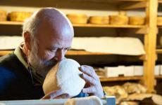 """«L'affinatore è chi sceglie il prodotto migliore, lo segue nelle evoluzioni naturali o pilotate, cura il formaggio in ogni suo passaggio, ne conosce i segreti e lo sa proporre nel momento della sua massima espressione gustativa»: solo le parole con cui Renato Brancaleoni,affinatore e docenteALMA, racconta il suo lavoro. Sarà protagonista dell'incontro""""Viaggio tra 55 DOP & IGP italiane. Alla scoperta del mondo del formaggio"""", seconda masterclass del corso """"Il Ristorante del Futuro"""", organizzato in collaborazione daIdentità Golosee dallaScuola Internazionale di Cucina Italiana ALMA. Con lui il professorDavide Mondin, coordinatore del progettoALMA Caseus,lo chef e patron diMiramonti l'altro Philippe Léveillé, Giovanni Guffanti dell'aziendaLuigi Guffanti, dal 1876 affinatori di formaggi italiani ed esteri, eMassimo Raugi, Restaurant manager diVilla Crespi"""