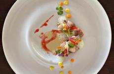 Ceviche di Cefalo su caponata napoletana: il piatto dell'estate di Fumiko Sakai