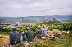 Soave e i suoi vigneti, in provincia di Verona