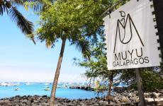 Muyu è un progetto di grande valenza sociale che anima l'isola diSan Cristobal, alle Galapagos, Ecuador. La crisi delCovid-19 è una minaccia per la comunità. Fai una donazione per sostenerla(le foto sono diPaulo Rivas Peña)