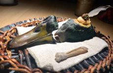 Il primo passaggio dell'anatra in 4 servizi di Duck Feast, piatto simbolo del menu Game& Forest del ristorante Noma di Copenhagen