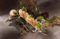 #eatmoresnails!Marco Sacco, chef deIl Piccolo Lagodi Verbania, è il primo di cinque chef che condivideranno con noi ricette pensate per promuovere una delle materie prime del futuro, oltre che della tradizione