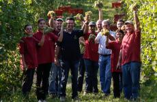 Il team delle Morette: la produzione parte dal vivaio di barbatelle per arrivare alle bottiglie di Lugana