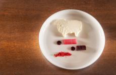 Rapa rossa, rabarbaro e latte di pecora, uno dei piatti diJacopa, l'insegna dell'Hotel San Francescoa Trastevere, Roma