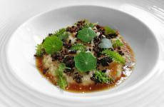 Quasi un riso in cagnone, sedano rapa, pino mugo e cardoncello: il piatto dell'inverno di Giacomo Lovato
