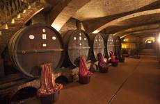 The barrels in the winery founded by Emanuele Alberto di Mirafiore offer a fascinating scene for the display of precious fabrics by historic firm Rubelli. This union with the Mirafiore wines will continue with Rosso Reale until January 2015 and will then be presented once again with another project called Tasting Velvet, during Expo Milano 2015