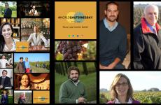 A collage of photos of some of the many participants in the World Sauternes Day