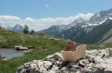 Andiamo alla scoperta della pasticceria Ugetti,a Bardonecchia (via G. F. Medail 80. Tel. 0122 99036,ugetti.it), nell'Alta Val di Susa