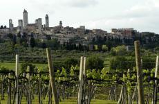 Tra vigneti e torri: la bellezza di San Gimignano